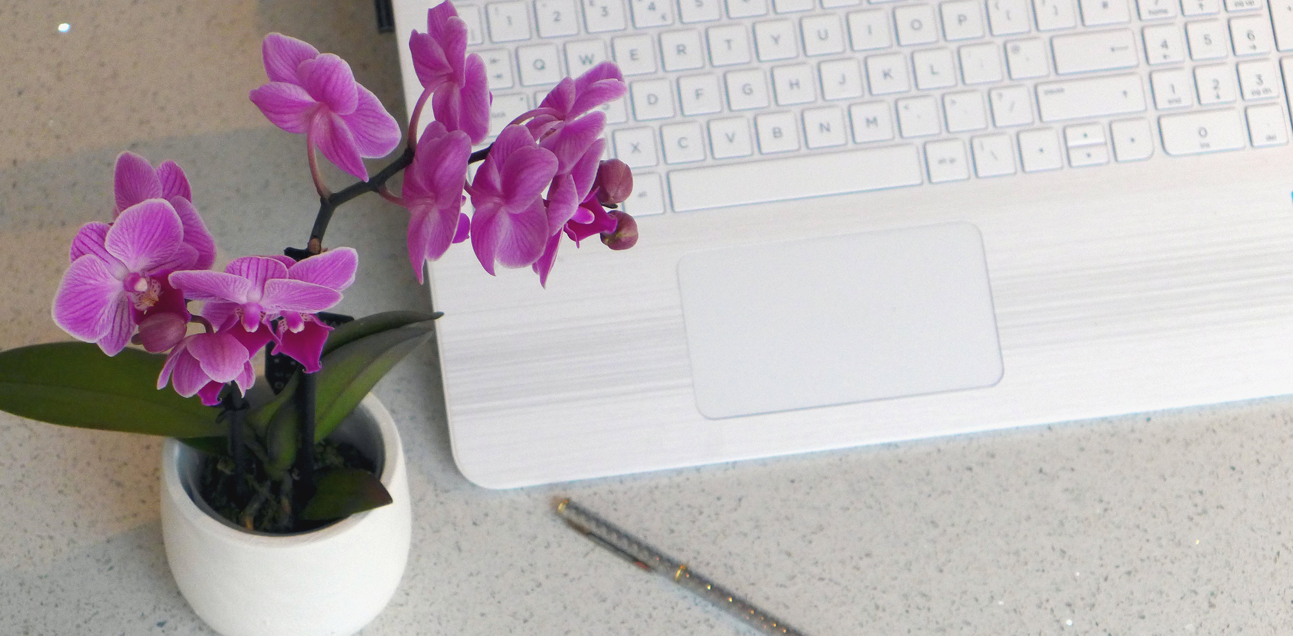 Seven Top Tips For Working From Home